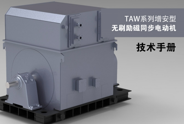 TAW Series Large Scale Three-phase Synchronous Motor