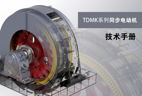 TDMK Series Large Scale Three-phase Synchronous Motor